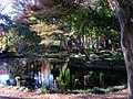 Autumn leaves of Tsukuba-Ham garden - panoramio.jpg