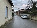 Avenue du Mas-Rolland (Saint-Maurice-de-Beynost) - 2019.jpg