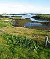 Bàgh Sgotbheinn - geograph.org.uk - 1341486.jpg