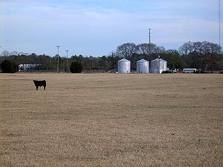 Tar Heel, North Carolina Town in North Carolina, United States