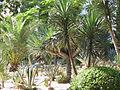 Bahai Gardens Impression.jpg