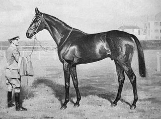 Bahram (horse) Irish-bred Thoroughbred racehorse
