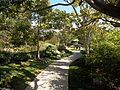 Balboa Park Japanese Garden 1.JPG