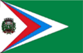 Bandeira Juara MT.png
