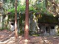 Bartošovice v Orlických horách, R-S 69 (rok 2010; 01).jpg