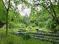 Baumschulenweg Späth-Arboretum 06.JPG