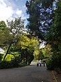 Belfast Botanic Gardens 20180914 134833 (49825290238).jpg
