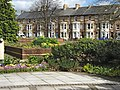 Belvedere Road, Taunton - geograph.org.uk - 1235575.jpg