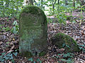 Bensheim Grenzstein Hemsberg 2.jpg