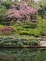 Bepflanzung oberer Teich Japanischer Garten Kaiserslautern.jpg