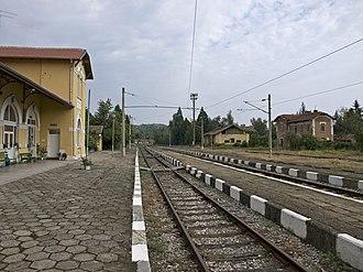 Berkovitsa - Berkovitsa railway station