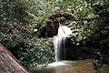 Berry creek falls - panoramio - Vadim Manuylov (2).jpg