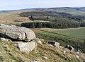 Bewick Hill - geograph.org.uk - 390689.jpg