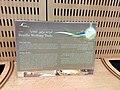 Biblioteca Braille Taha Hussein 04.jpg