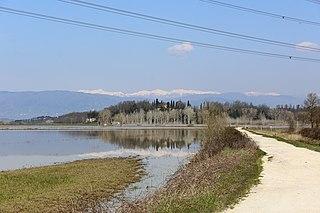 Lago di Bientina Former lake in Tuscany, Italy