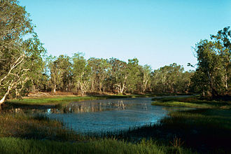 Billabong - Billabong, Northern Territory