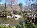 Birmingham Botanical Gardens - Long Life Lake 2.jpg
