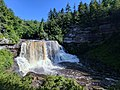 Blackwater Falls of Blackwater Falls State Park 22.jpg
