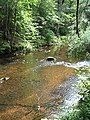Bloomfield Provincial Park IMG 8258 (1848226201).jpg