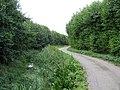 Blue Gowt Drove, Pinchbeck, Lincs - geograph.org.uk - 218693.jpg