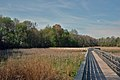 Boardwalk trail (11714237216).jpg