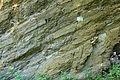 Bochum - Geologischer Garten (01) 02 ies.jpg