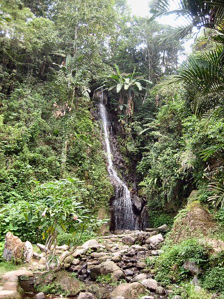 Air Terjun - Kebun Raya Cibodas