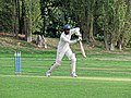 Botany Bay CC v Rosaneri CC at Botany Bay, Enfield, London 18.jpg