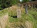 Boundary stone - geograph.org.uk - 1323918.jpg