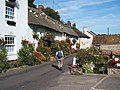 Branscombe, flower displays and doves on thatched roof - geograph.org.uk - 1153316.jpg