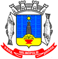 Brasão de Salinópolis.PNG
