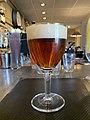 Brasserie des Terreaux (Belley) - verre de bière au comptoir.jpg