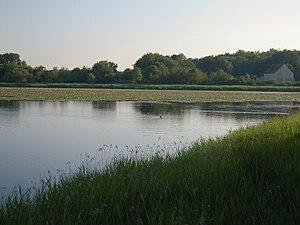 Saint-Michel-en-Brenne - A view beside the pond in Saint-Michel en Brenne