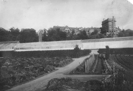 Long greenhouses in front of two large buildings
