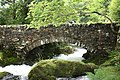 Bridge over stream at Llyn Cwellyn - panoramio.jpg