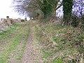 Bridleway to Toyd Down - geograph.org.uk - 1176021.jpg