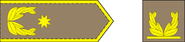 Brigaden general-arm