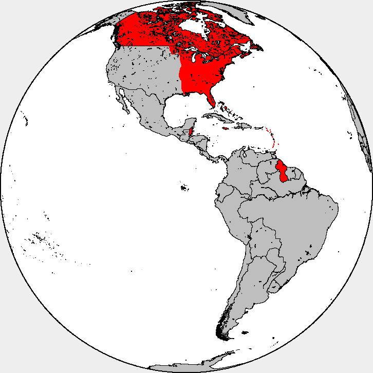 British in the Americas