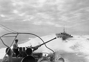 Coastal Forces of the Royal Navy - Motor Torpedo Boats in the Mediterranean, February 1945