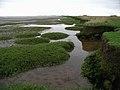 Broomfleet Island - geograph.org.uk - 584769.jpg
