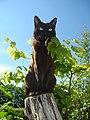 8 / Asian (cat)