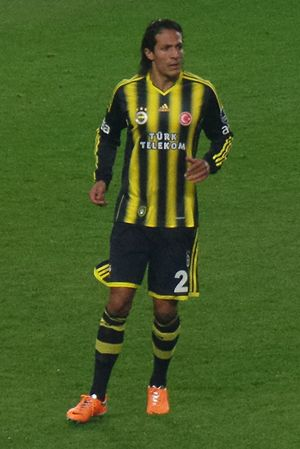 Bruno Alves - Alves playing for Fenerbahçe in 2014.
