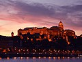 Budapest ^ Danube - Budapest Castle - panoramio.jpg