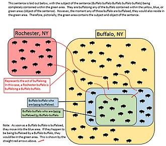 Buffalo buffalo Buffalo buffalo buffalo buffalo Buffalo buffalo - A diagram explaining the sentence