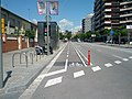 Buffered on-street two-way bikeway separated by bollard and bumps (17877877843).jpg