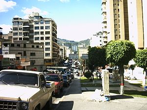 Buildings in Los Teques 3.jpg