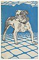 Bulldog MET DP844719.jpg