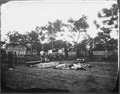 Burial place, Fredericksburg, Va - NARA - 528928.tif