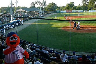 Burlington, North Carolina - Burlington Royals stadium with mascot Bingo