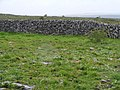 Burren stone wall - Commons Townland - geograph.org.uk - 1312994.jpg